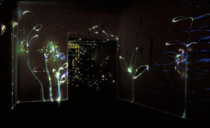 light-wall-a-web-copy-1